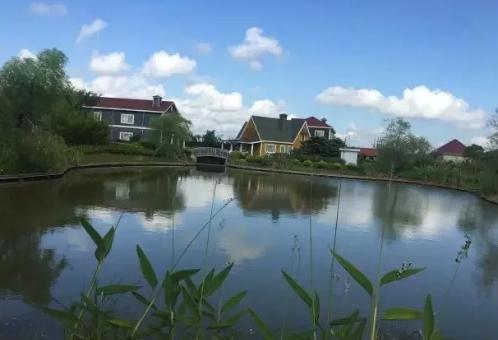 崇明森苗水上木屋生态园